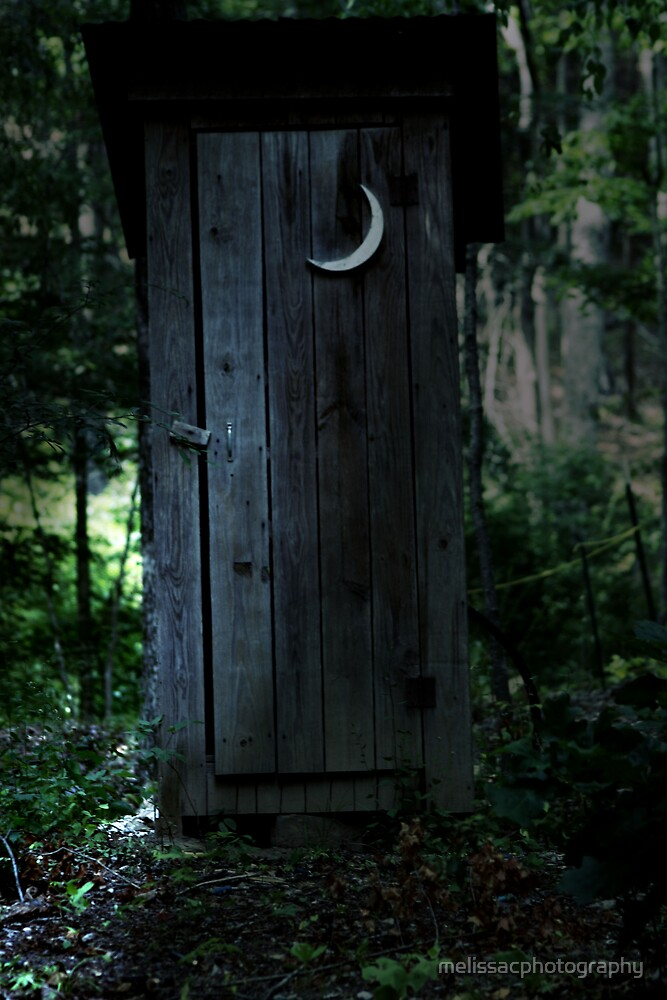 Outside Potty in the pale moonlight by melissacphotography