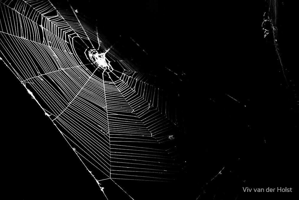 spiderman is having you for dinner tonight by Viv van der Holst