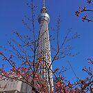 Blossom Tower, Japan by haymelter