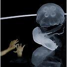 Alien Life Forms Mindscape by Wayne King