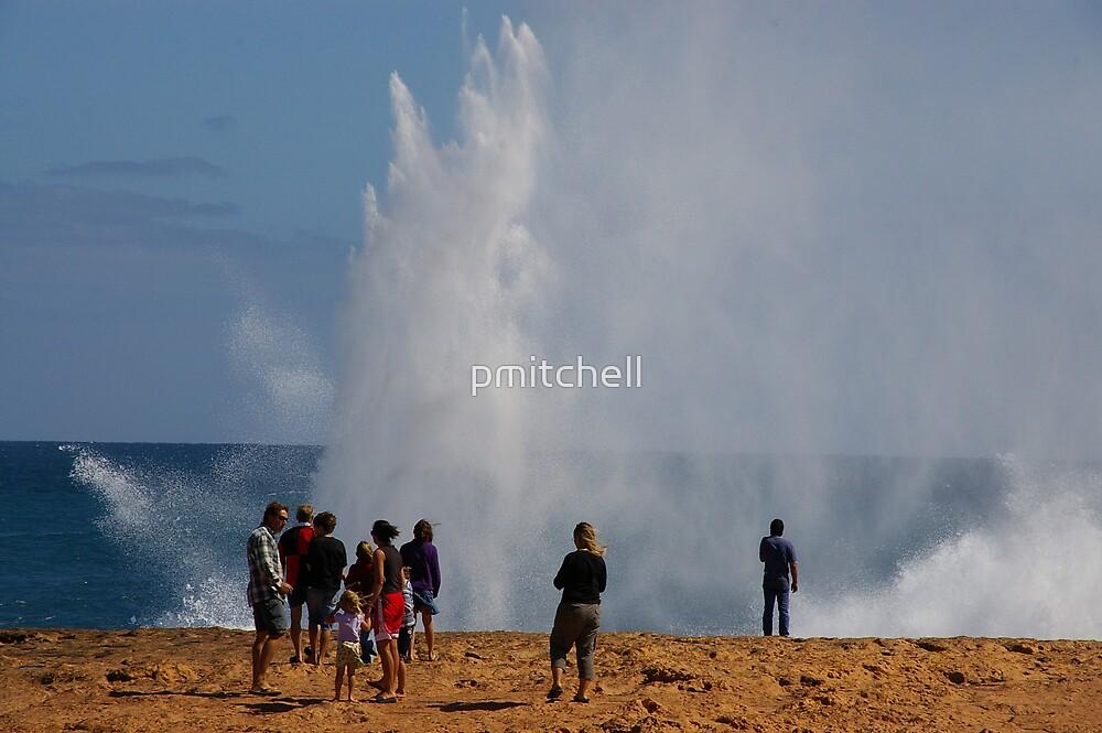 Blowhole, near Carnavon, Western Australia by pmitchell