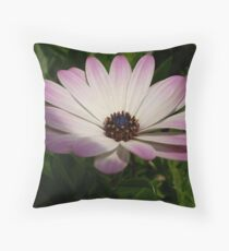 Side View of A Pink and White Osteospermum Throw Pillow
