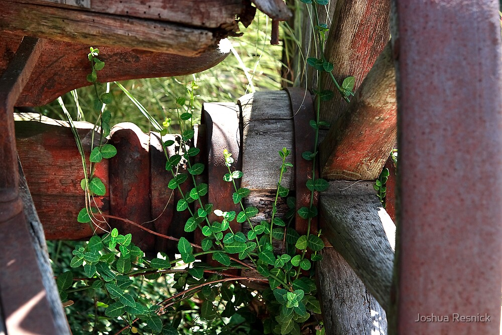 Rustic Wagon Wheel by Joshua Resnick