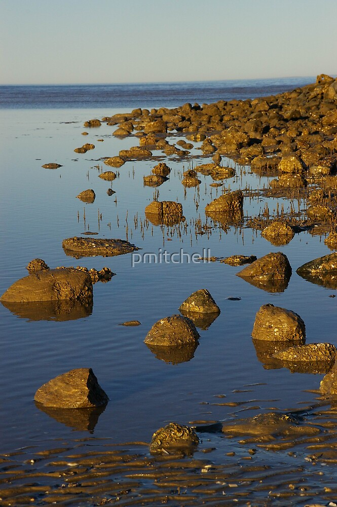 rocky beach by pmitchell