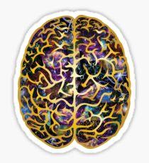Neuropsychology Sticker