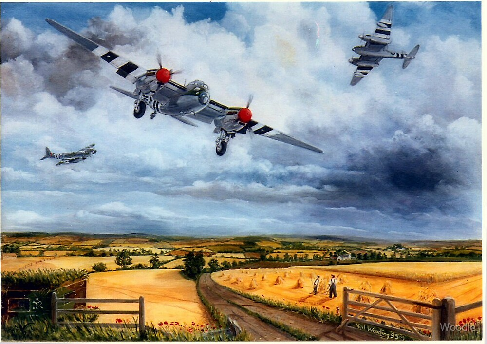 Mosquitos returning after D-Day by Woodie