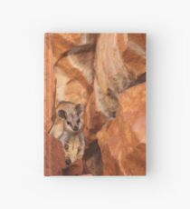 A Black-flanked Rock Wallaby Hardcover Journal