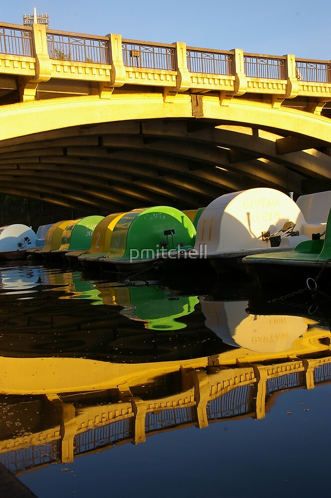 Reflections - River Torrens, SA by pmitchell