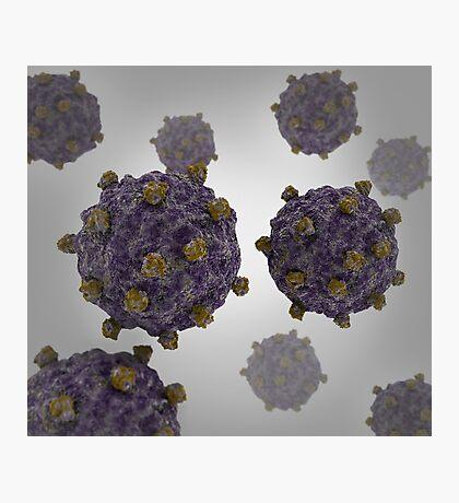 Conceptual image of coxsackievirus. Photographic Print