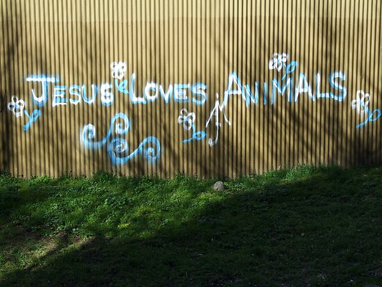 Jesus Loves Animals by John Douglas