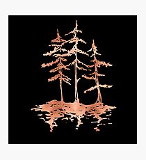 THE THREE SISTERS -  Rose Gold Pink Vintage Forest Adventure Art Photographic Print