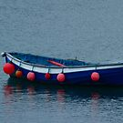 Little Blue Boat by Samantha Higgs