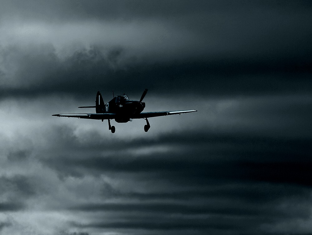 Coming home by ajnphotography