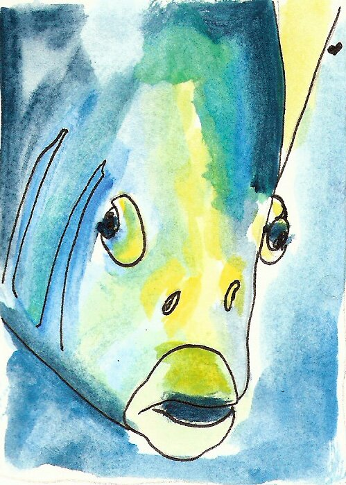 Tropical Fish Series 1 by art4friends