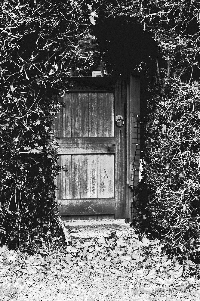 Secret Garden by Natasha  Allen