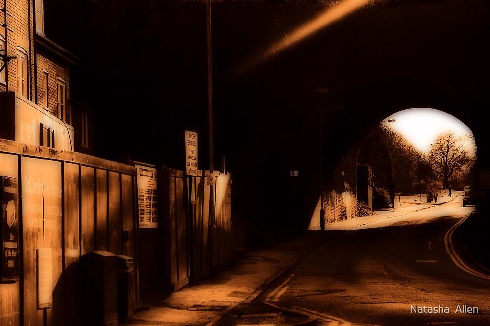 Southdown Bridge, Walkers Road, Harpenden by Natasha  Allen