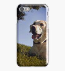 Labrador Dog iPhone Case/Skin