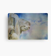 Sloth in Tree Canvas Print