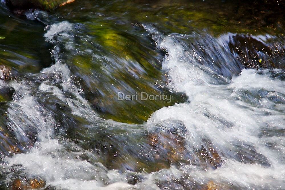 Rocks and Water by Deri Dority