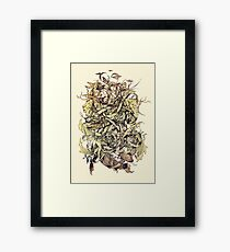 Earth, Air & Water Framed Print