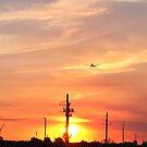 Pink Miami Skies  by LUISPENA