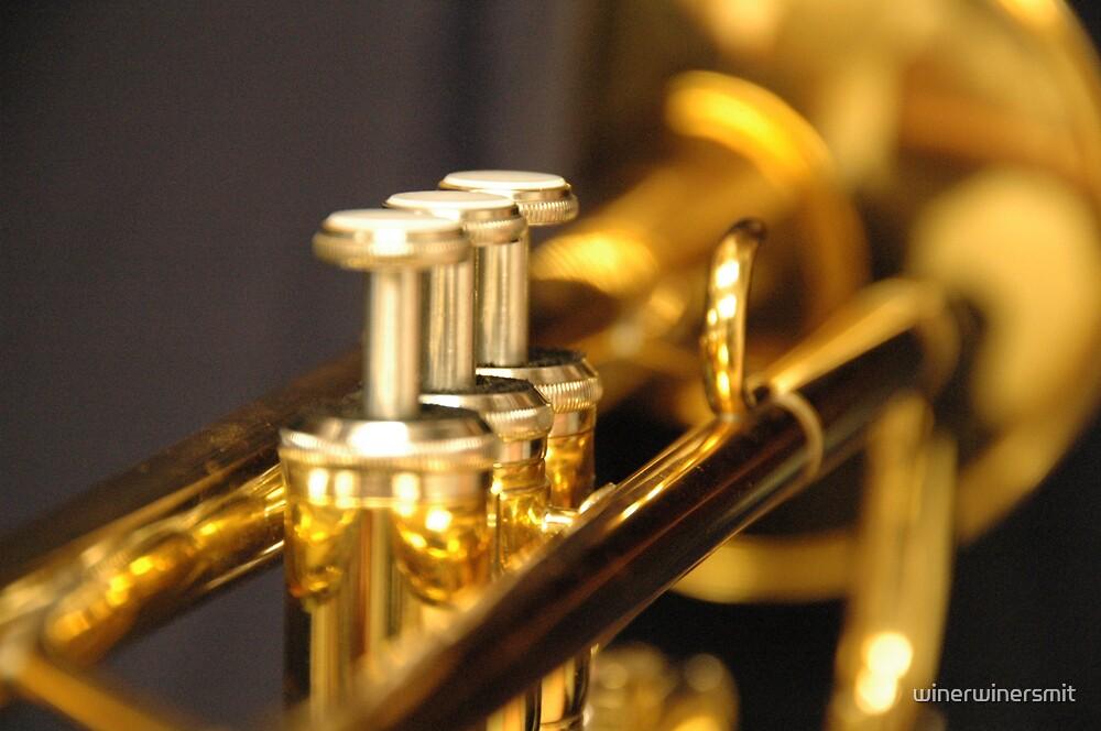 Trumpet by winerwinersmit