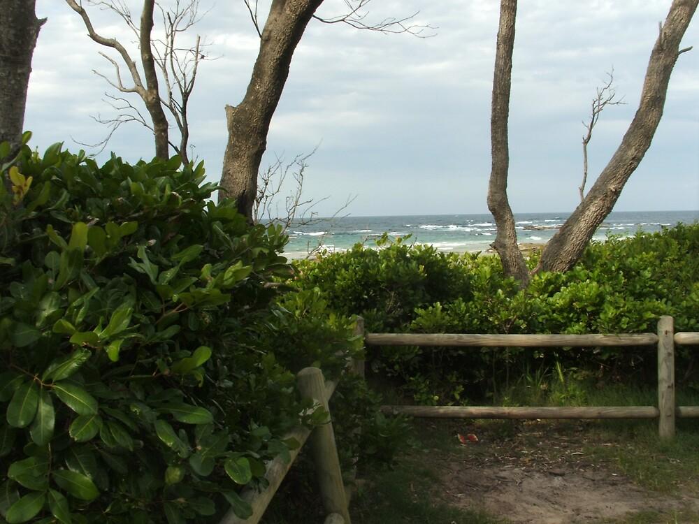 Third Head Beach View by bobbijo07