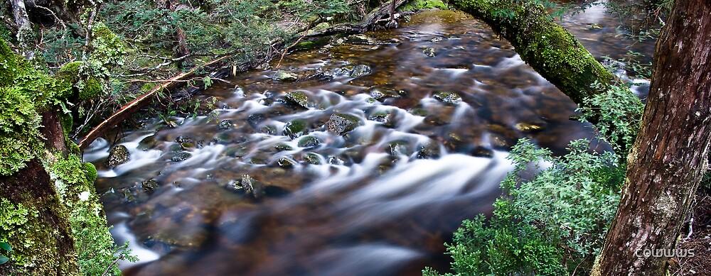 River Flow by cowwws