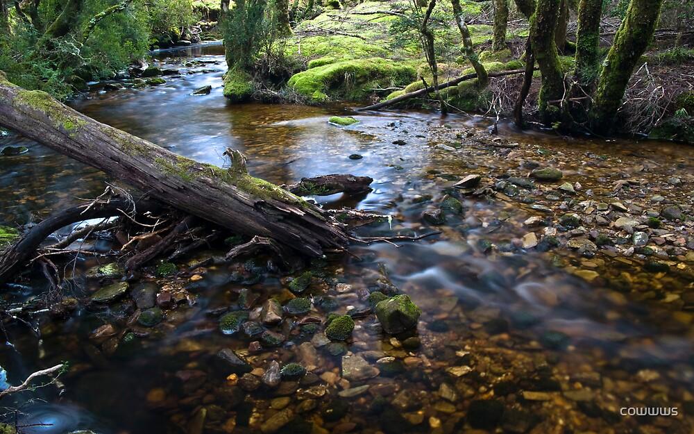 River Flow 2 by cowwws