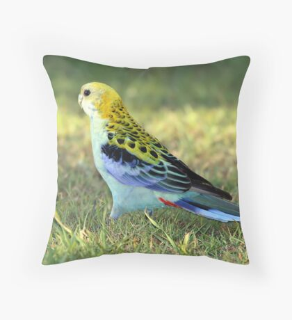 Pale-headed Rosella Throw Pillow