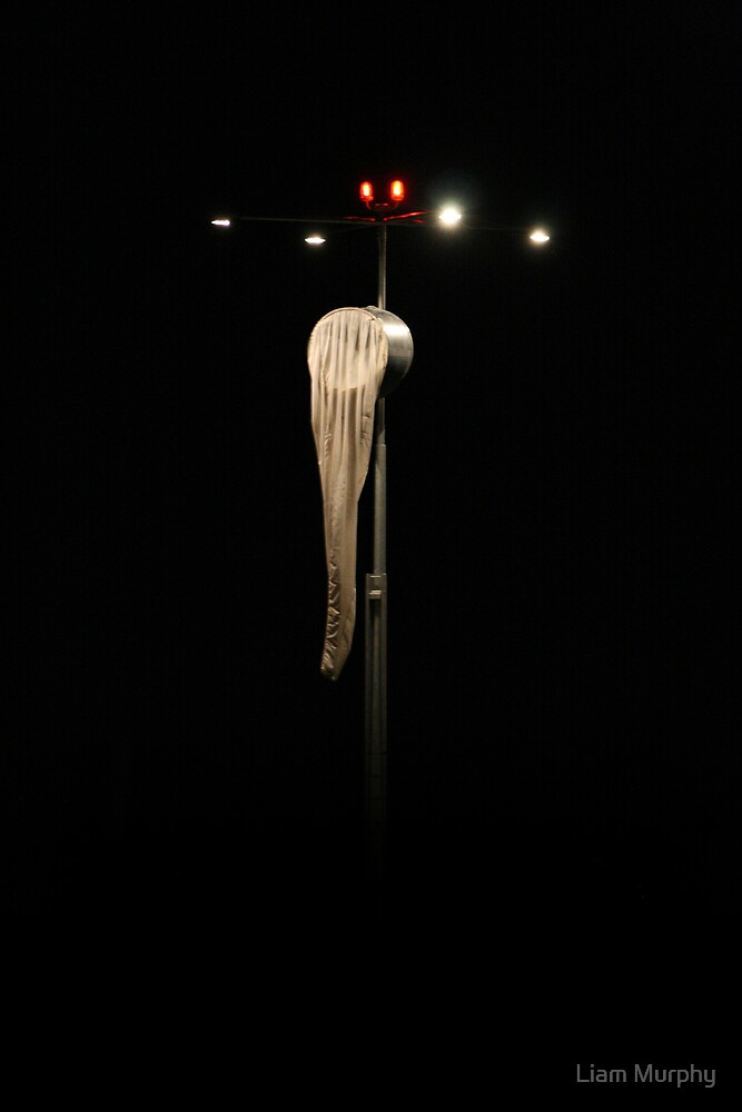 Silent Night by Liam Murphy