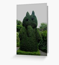 Topiary At Greenbank Gardens, Glasgow Greeting Card