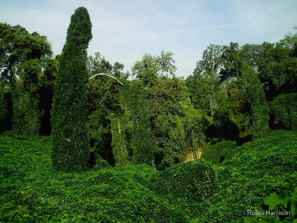 Kudzu covered grotto by Robin Harrison