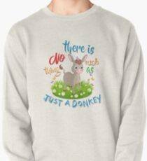 NO Such thing as JUST A DONKEY Pullover