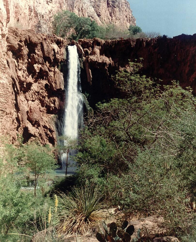 Grand Canyon Falls by mkpshay