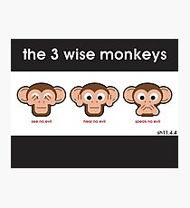 The 3 Wise Monkeys Photographic Print