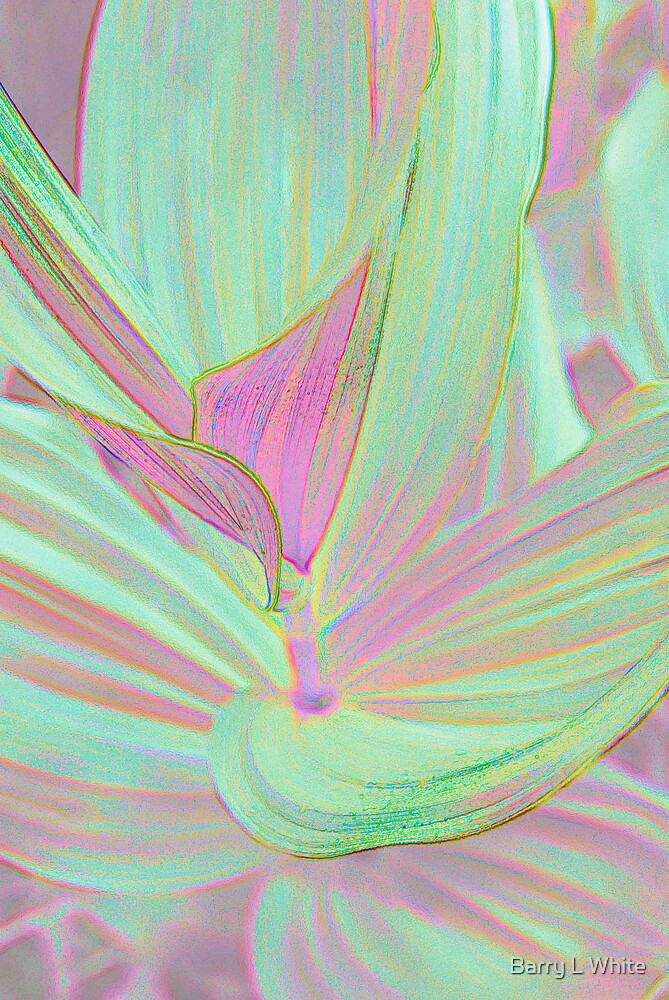 Pastel Interpretation by Barry L White
