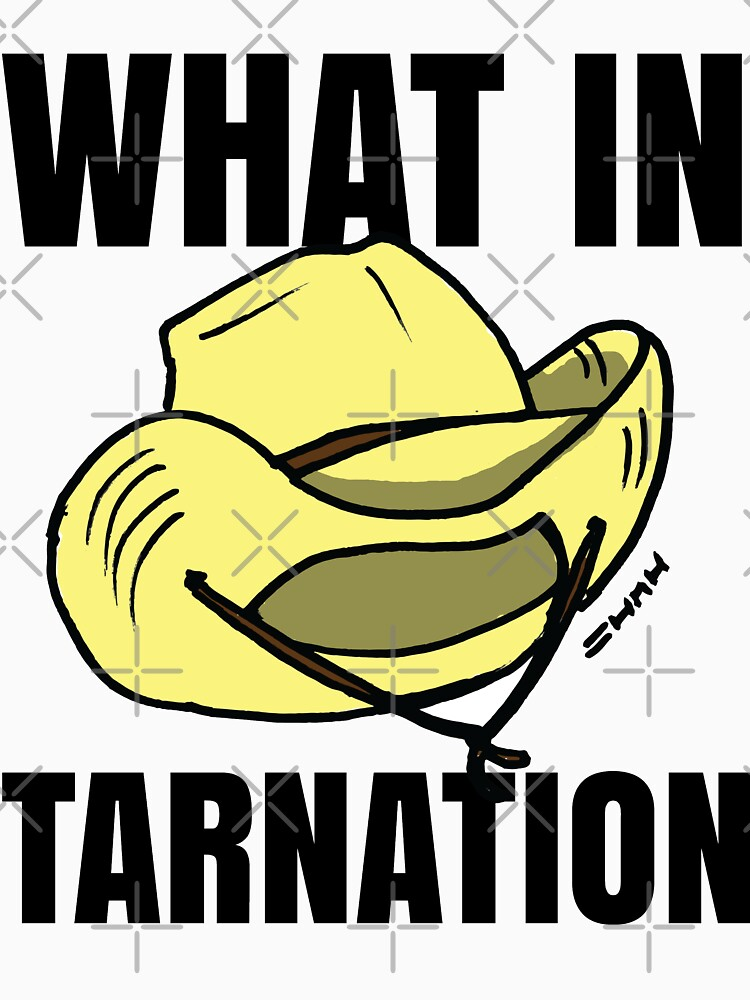 What in Tarnation Meme Cowboy Hat by sketchNkustom