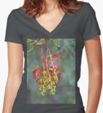 Grevillea in the Park #2 Women's Fitted V-Neck T-Shirt