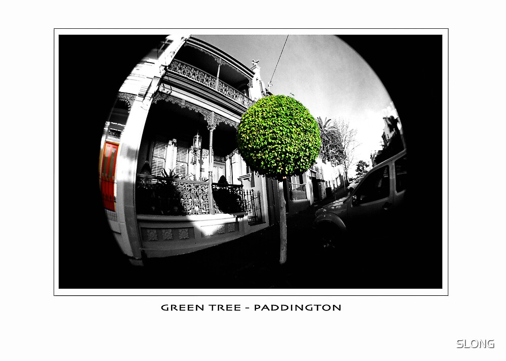 greentree by SLONG