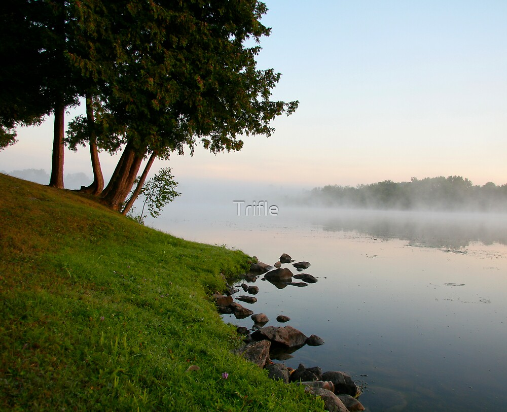 Misty Morning by Trifle