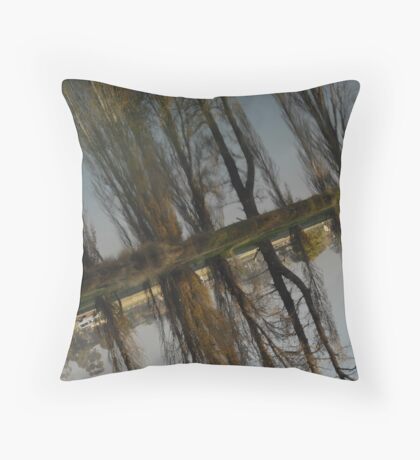 Reflections Out of Time Throw Pillow
