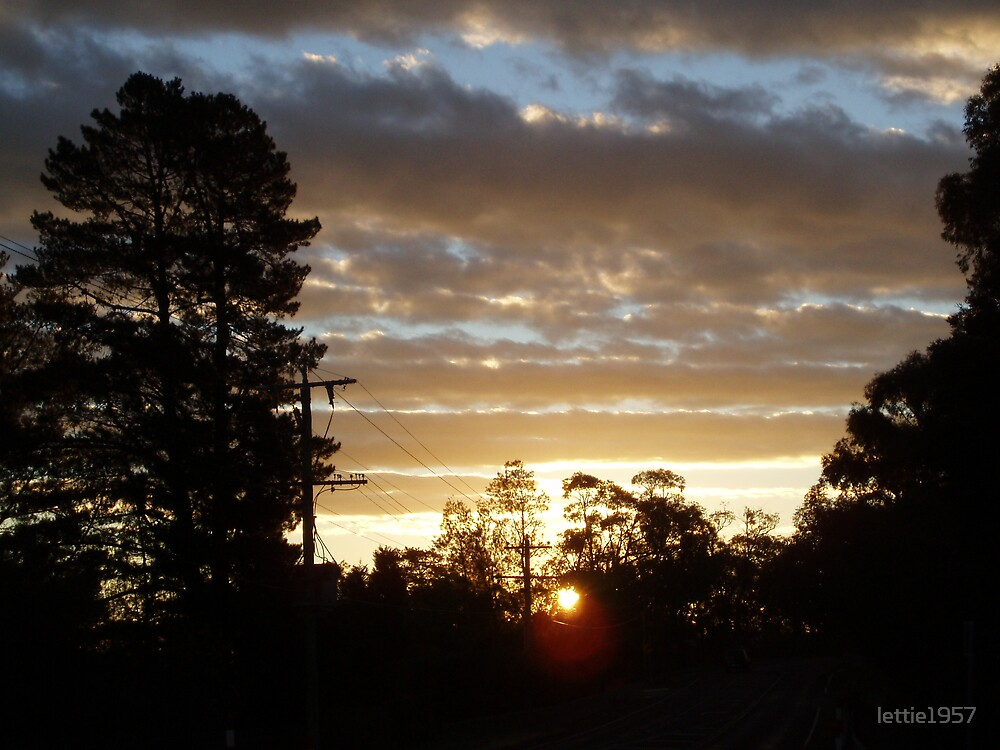 Sunset with trees silhouette against the sky  by lettie1957