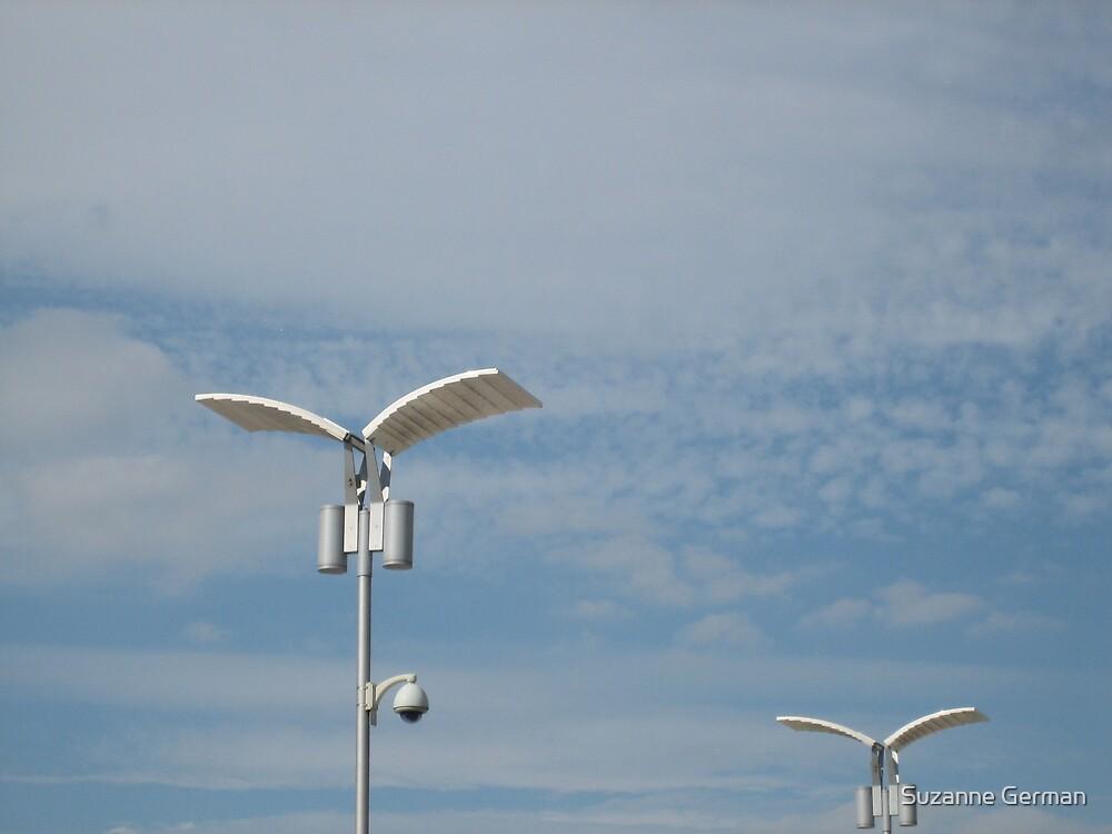 Birds by Suzanne German