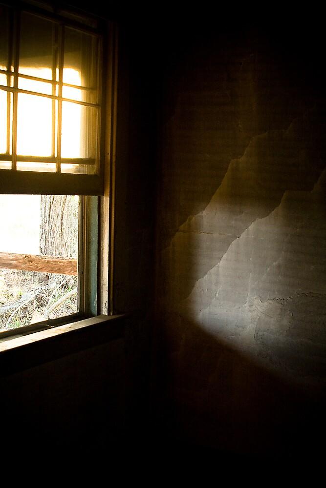 Window by Adam  Scholl