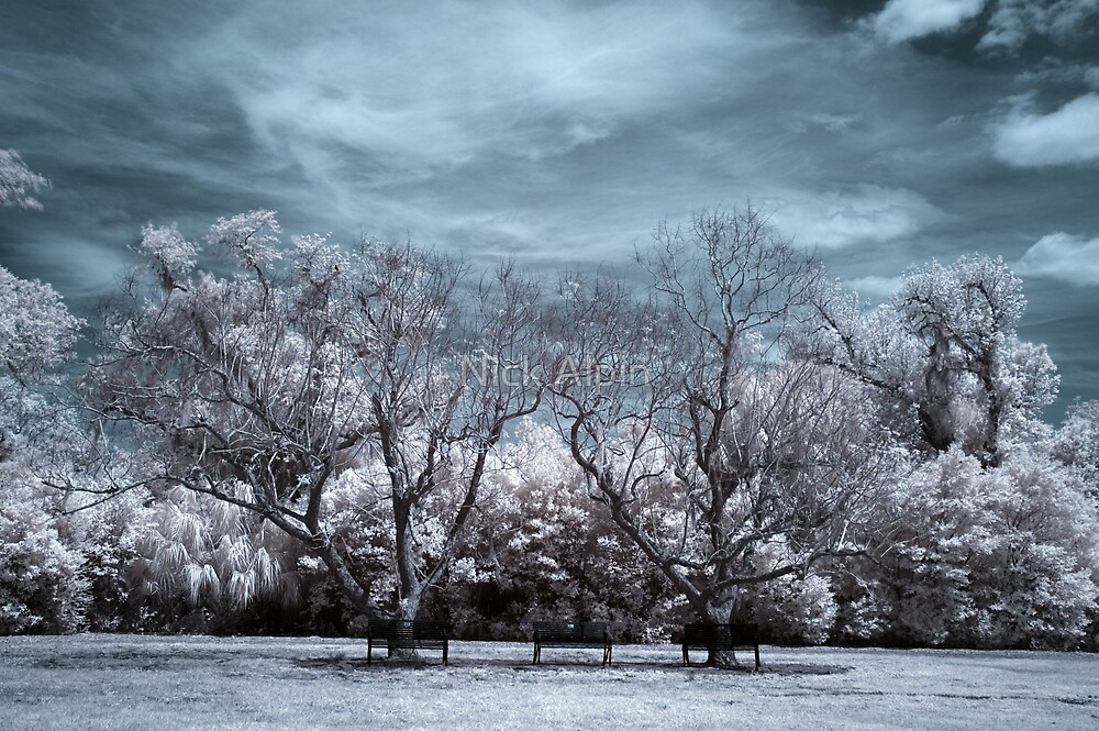 Infrared 04 by Nick Alpin