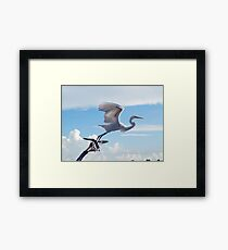 Nothing To Fear Framed Print