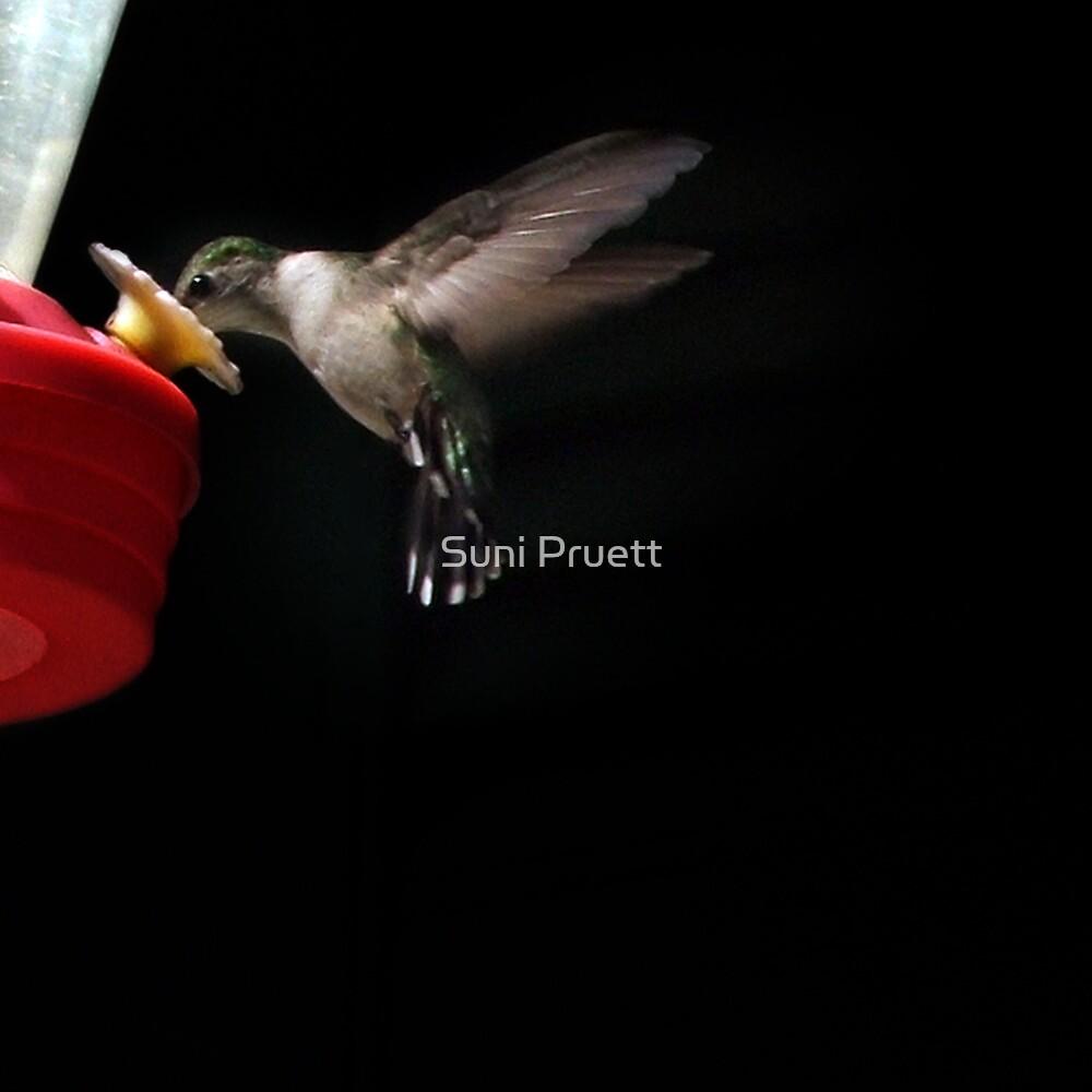 Just A Quick Dinner  - version 2 by Suni Pruett