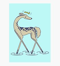 Crown Deer Photographic Print