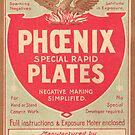 Phoenix Glass Plate Negatives by Kawka